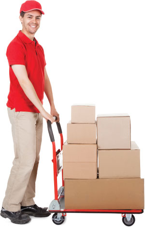 Removal Van Services