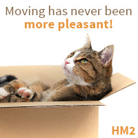 Reliable and Cheap Moving Solutions in Kingston upon Thames
