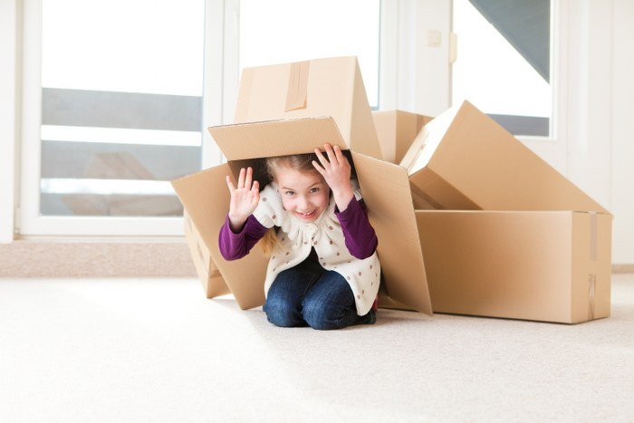 domestic removals with kids