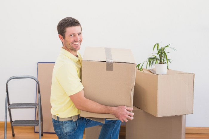 safe domestic removals