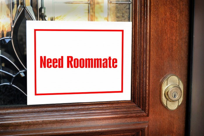 seeking a roommate