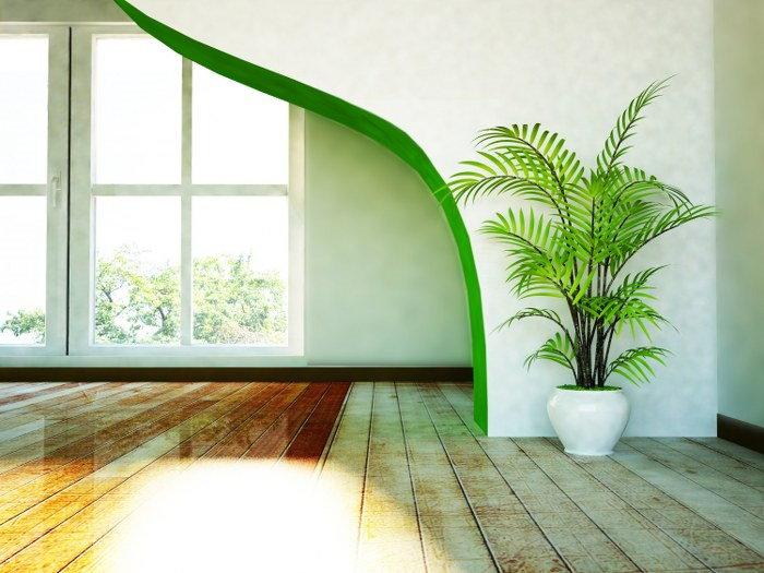 moving plants